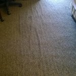 Carpet is bunching and has stains