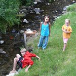 Playing in Reverse Creek behind cabin #10