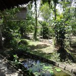 Nguyen Shack Homestay - Can Tho의 사진
