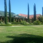 Bilde fra South Coast Winery Resort & Spa