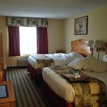 Photo de BEST WESTERN Rochester Marketplace Inn