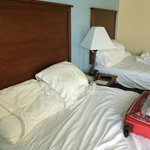 Bilde fra Baymont Inn and Suites Gainesville