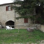 Photo de Country House Santa Felicita Paterna