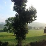 View from room on Sunday morning (complete with sheep greeting us each day!)