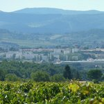 Foto de O'Vineyards Bed & Breakfast - Carcassonne