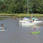 Paddle-boarding on the Kennebunk River