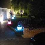 Flowerpots lit up at night