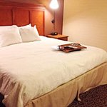 Hampton Inn Pittsburgh - McKnight Rd.照片