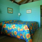 Guavaberry Spring Bay Vacation Homes Foto