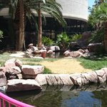 Photo of Flamingo Las Vegas Hotel & Casino