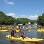 Kayak, Hike & Snorkel Adventure in the Mangrove Lagoon, Virgin Islands Ecotours Foto