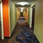 Hallway with guest rooms doors. Clean carpets and great decor.
