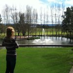 Looking out over to the golf Course