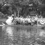 The Swan Boats