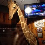 Big game with long necks on the wall