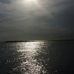From the Jetties
