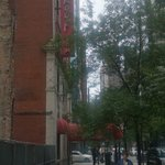 Foto van Red Roof Inn Chicago Downtown Magnificent Mile