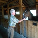 Bilde fra Mountain Horse Farm Bed and Breakfast and Spa