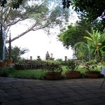 View of the lake from garden dining under the rubber tree.