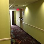 Lime Green & Brown/Turquoise Carpeting in Hallway