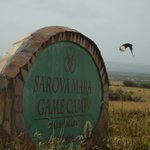Photo de Sarova Mara Game Camp