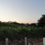 The Wine Country Innの写真