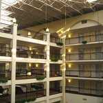 Embassy Suites Cincinnati - Northeast (Blue Ash) Foto