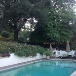 Pool side at the Madrona Manor