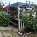 Pergola over a picnic table.