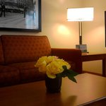 Foto de TownePlace Suites by Marriott Detroit Livonia