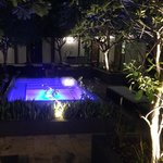 Honjin private plunge pool