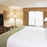 Foto de Holiday Inn Hotel & Suites Ann Arbor Univ. Michigan Area