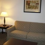 Foto de Holiday Inn Express & Suites Omaha I-80
