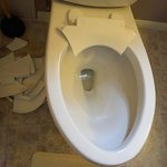 Toilet seat that exploded