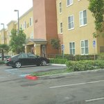 Photo of Homewood Suites by
