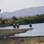 Foto de Manyara Ranch Conservancy