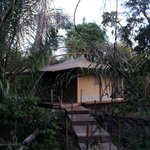 Photo de Rhino River Camp