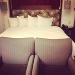 Chestnut Hill Hotel의 사진