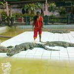 Samui Crocodile Farm Foto