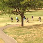 Windhoek Country Club Resort resmi