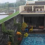 view of rice fields over pool from one terrace