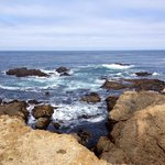 The rocks at Point Lobos