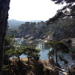 Stunning view at Point Lobos