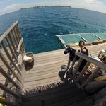 The snorkelling off this bar is *amazing*. Just drop over the edge and your among some amazing f