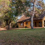 Photo of Shimuwini Bushveld Camp