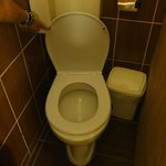 Major con: you couldn't pee without using your hand to keep the toilet seat cover up