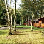 Darwin Forest Lodges