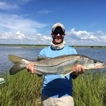 Snook catching in the cedar key backwater!