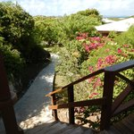 Guavaberry Spring Bay Vacation Homesの写真