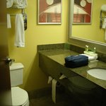 Foto van Holiday Inn Express Hotel & Suites Charleston/Ashley Phosphate